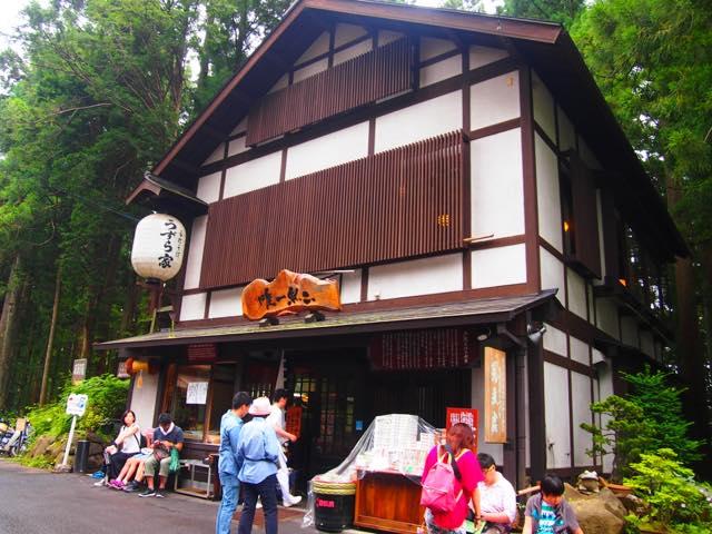 【日帰り旅一人旅も】行くだけでパワーアップできる、長野・戸隠神社の五社めぐり