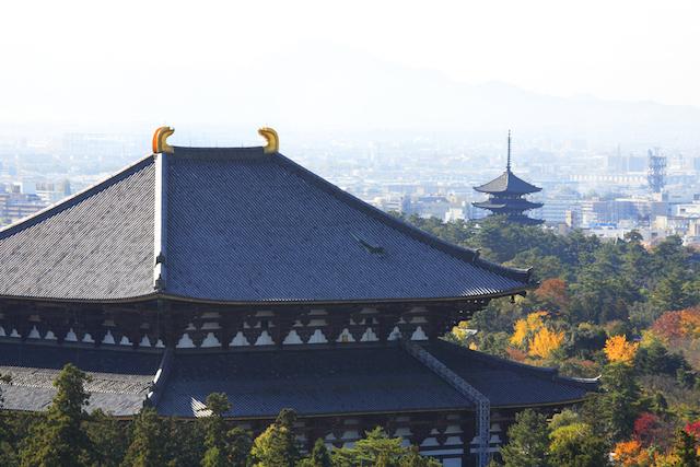 【秋色いにしえの都】はじめての奈良 女子力アップのひとり旅入門ガイド