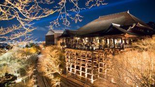 秋の清水寺、紅葉を楽しむ幻想的なライトアップ