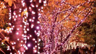 今週どこ行く?東京都内近郊おすすめイベント【11月9日〜11月15日】無料あり