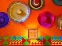 路上にシマウマ!?メキシコで【日本人旅行者がビックリ】した5つの出来事