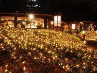 都内ホテル最大級規模の約13万球のイルミネーションが輝く、ホテルニューオータニのクリスマス!
