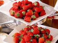 完売必至のフレッシュいちごの食べ比べ!ナイトタイム・デザートブッフェ「いちごジャーニー」開催