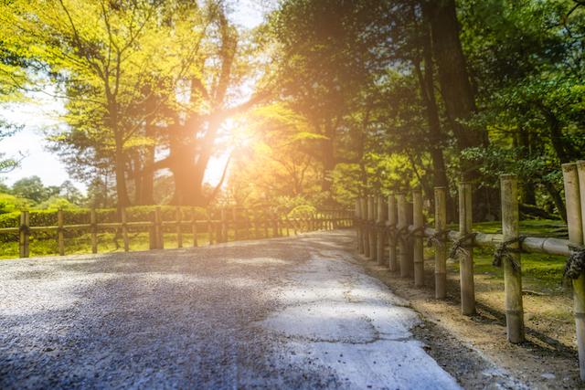 素泊まりの朝に立ち寄りたい!早朝からモーニングを出す金沢の素敵なカフェ3選