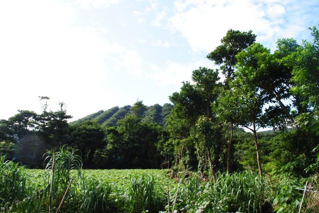 【東京都】ここは日本?! 満点の星と海に囲まれた美しき秘島「青ヶ島」