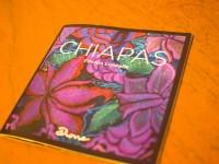 マヤ先住民伝統の美しい青紫花刺繍とシューズのコラボ