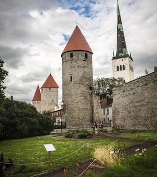 【エストニア】体がぞくぞく?古い塔に隠された地下トンネルが面白そう