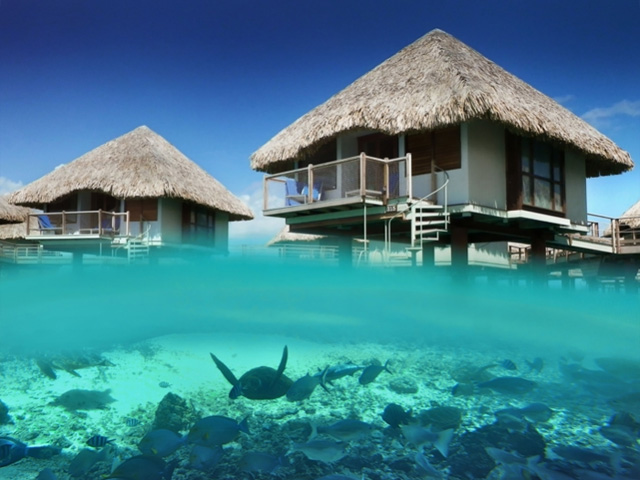 胎内にいるかのように心地よい、海と一体化して泊まれるホテル