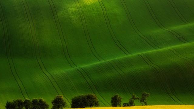 人と自然の共存から生み出される、「チェコの丘絶景」