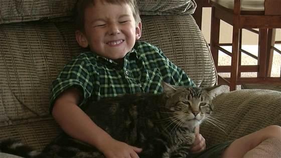猫パンチで犬を撃退!飼い主の愛児を救ったスーパー・キャット