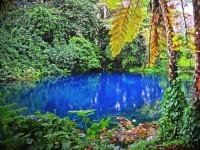 バンジージャンプ発祥の地・バヌアツ共和国でみれる世にも珍しいもの5つ