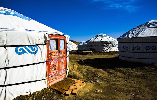 カルピス誕生のきっかけとなったモンゴルの馬乳酒