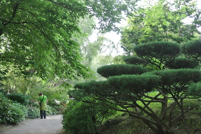 日本庭園でピクニック!?フランス人を魅了する、南仏のジャパニーズガーデン