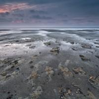 童心に返って泥歩き!島から島へ渡る、オランダのワドローペンって?