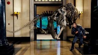 ワクワクどきどき、宿泊できる博物館!恐竜たちと過ごすナイト・ミュージアム
