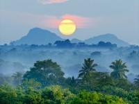 これぞ生命の楽園!スリランカの大自然で貴重な生き物達と触れ合う