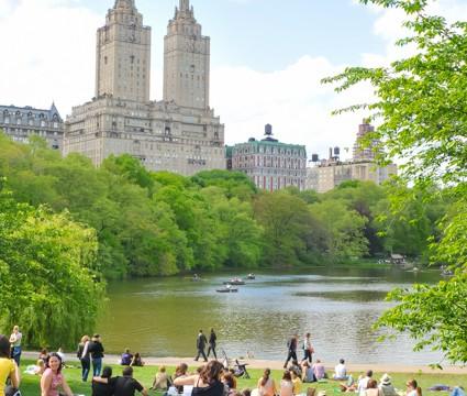 NY在住者が教える、セントラルパークでピクニックを最高に楽しむ方法