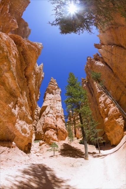 ここは本当に地球?アートスティック世界が広がる「ブライスキャニオン国立公園」