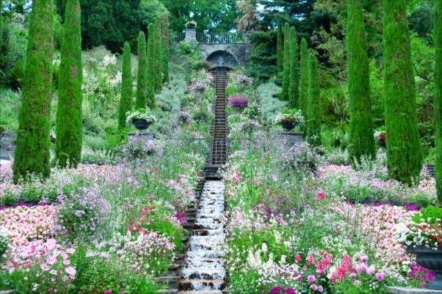 旅人の注目を集める南ドイツ!彩り豊かな植物が咲く「花の島」へ