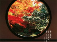 「そうだ 京都、行こう。」のCMとポスターでめぐる秋の絶景