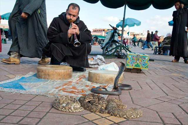 【モロッコ】毎日がお祭り!砂漠の理想郷「ジャマ・エル・フナ広場」