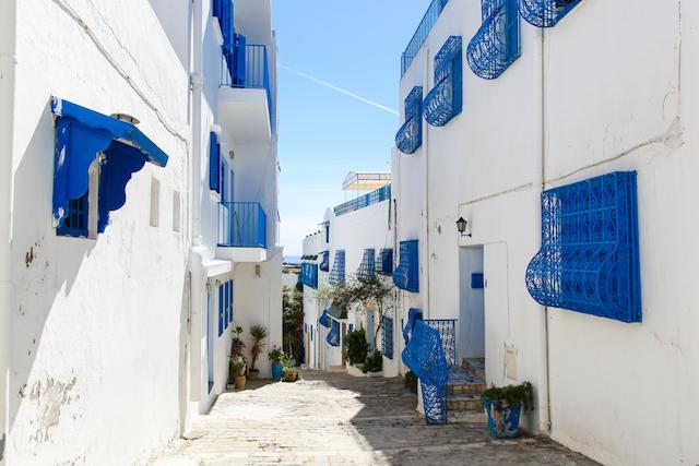 チュニジアにもあった白の町「シディ・ブ・サイド」