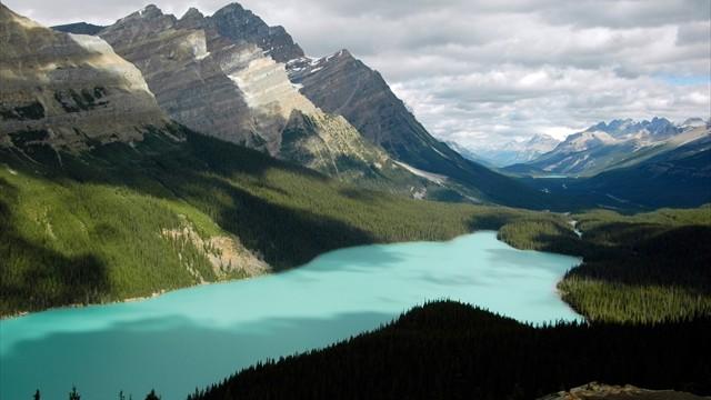 絵の具で描いたような、青いキツネが横たわる湖
