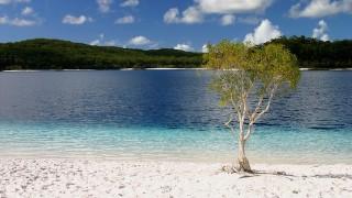 自然が生み出した奇跡!「フレーザー島」で出会う彩り豊かな景色
