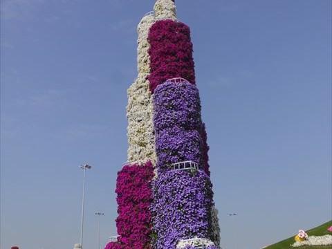 【ドバイ】ギネス認定!砂漠の国に現れた、ド派手な花畑「ミラクルガーデン」