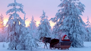 【フィンランド】サンタって本当にいるの?サンタクロース村、夢の光景