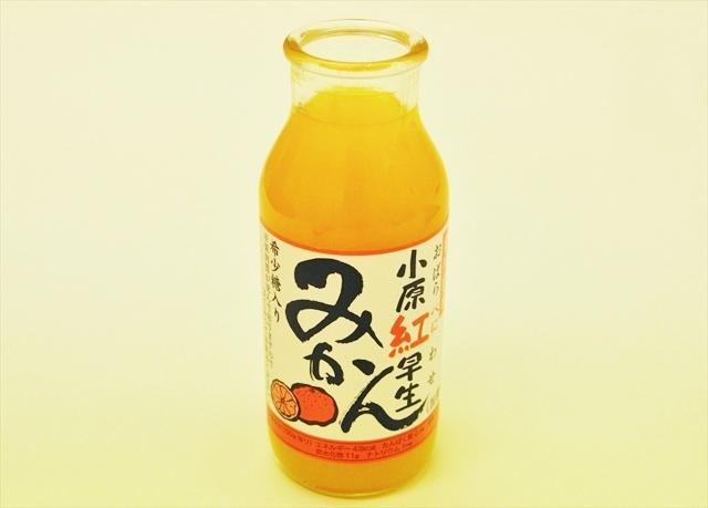 日本に眠る、知られざる「ご当地柑橘(かんきつ)」を発掘!