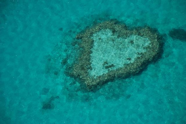 サンゴ礁と熱帯雨林の楽園「ウィットサンデー諸島」の休日