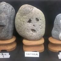 日本でたった一つ!マニアックすぎる博物館「珍石館」