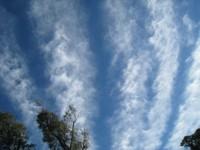 思わず画面キャプチャして携帯に保存しておきたい面白気象画像