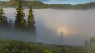 阿弥陀如来かそれとも魔女か!? 虹色の後光をまとう不思議な現象