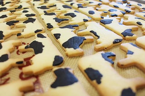 3月20日はサブレの日!キュートで愛くるしい動物サブレ8選