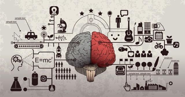 脳の特徴を活かしてあなたの学習効率を最大化させる方法