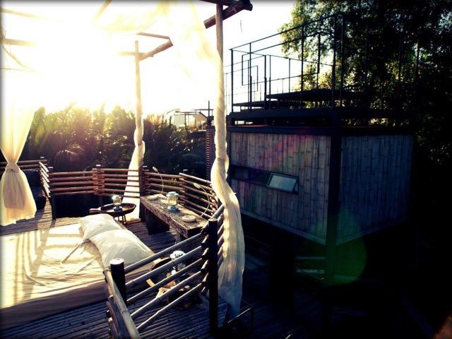 吊り橋からUFOの部屋まで?驚きのツリーハウスホテル3選