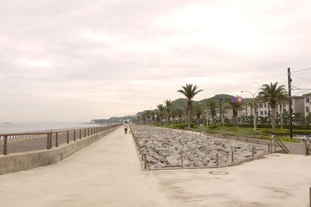 【観音崎】リゾート気分満点の海沿いの散歩道