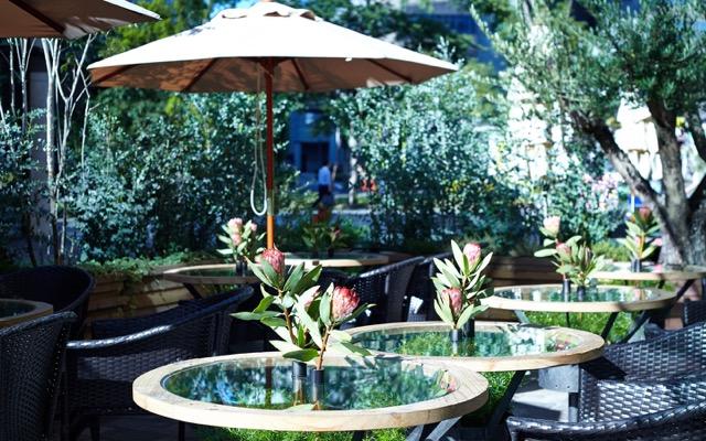 溢れる緑。心安らぐお花屋さんカフェに行ってみませんか