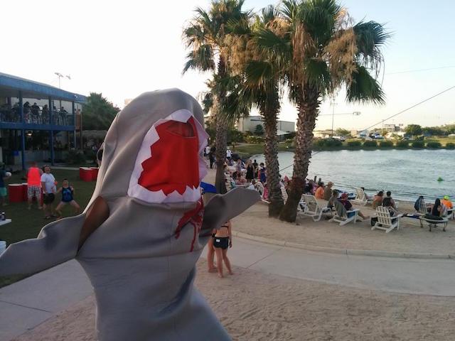 【面白ネタ】恐怖!あの絶叫映画「ジョーズ」を水中で観る映画館