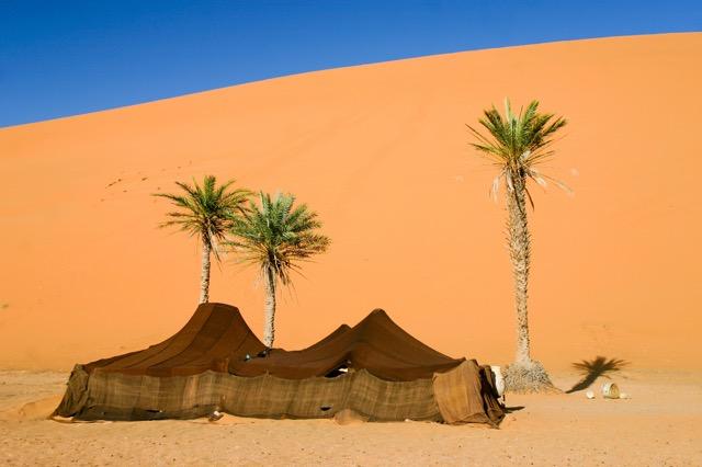 砂漠の民に学ぶ、暑さを元気に乗り切るための5つのヒント