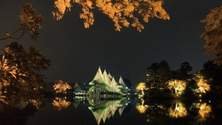 日本三大庭園の兼六園で行われる紅葉のライトアップを観に金沢へ