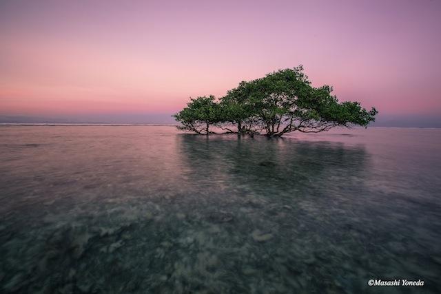 日本人がまだ知らない、小さなリゾート島でみつけた絶景
