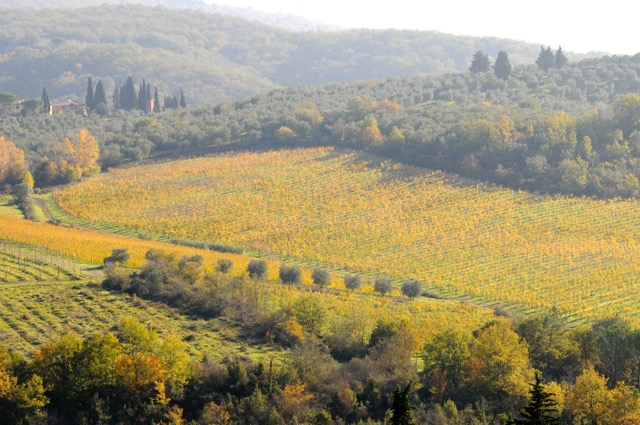 イタリアの秋、見つけた