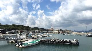 サイクリングだと何倍も楽しい!アートを巡る直島の旅
