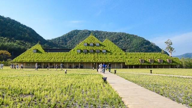 まるでジブリの世界!ファンタジックな緑屋根のカフェ「ラ コリーナ近江八幡