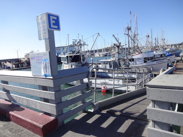 値段は日本の8分の1! 漁師から激安で購入するアラスカ産いくらに感動