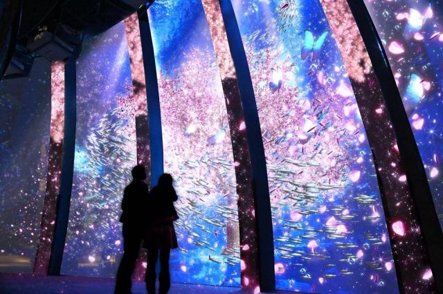 【都内あり】水族館と桜の豪華コラボが楽しめる夢のようなイベント