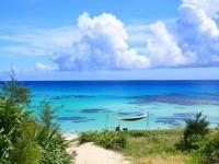東京から2時間で行ける!沖縄より近い奄美大島の海が絶景だった